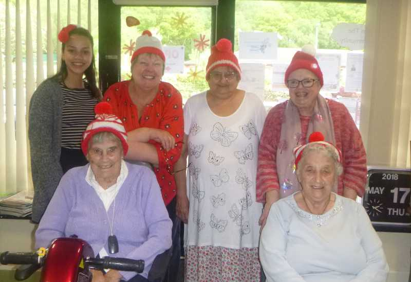 Knitting Wally hats